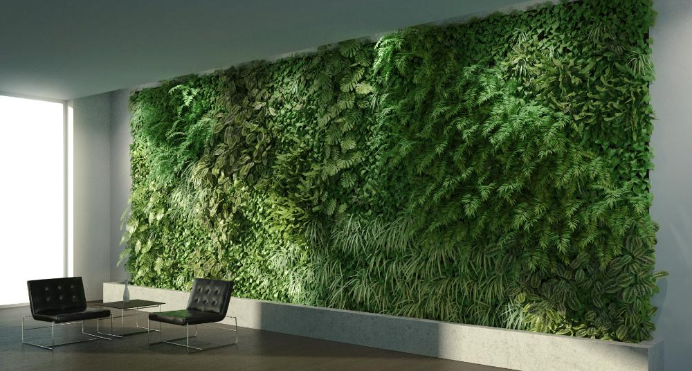 Creating A Green Wall Skatter Knowledge Base